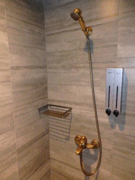 シティスイーツ 高雄駁二館 シャワーの水流も強い!角度や高さも自由自在!